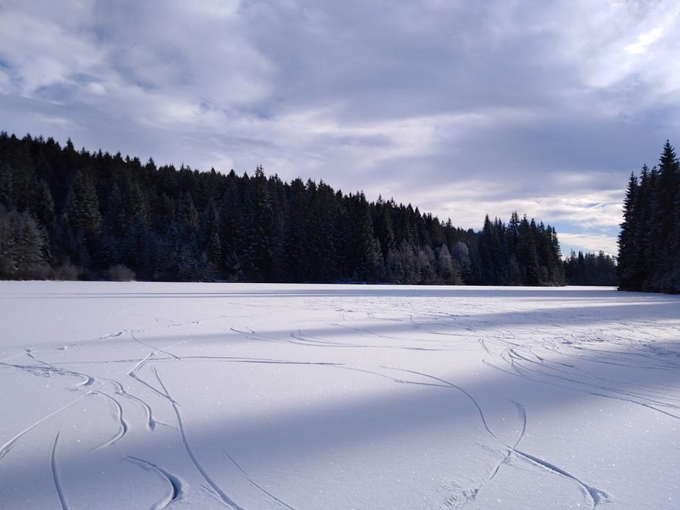 Pohořský rybník nebo také Jiřičská nádrž u Pohoří na Šumavě.