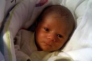 Šimonek Kučera vykoukl na světlo světa 8. června 2016 v 1:40, měřil 49 cm a vážil 3275 g. Maminka Karolína Thonová je na svého prvorozeného potomka hrdá, jeho tatínek Michal Kučera byl u porodu a přestřihl pupeční šňůru. Rodina žije vČeském Krumlově.