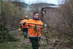 Drážní hasiči na Těchorazu ve Vyšším Brodě odklízeli obrovský smrk, který padl na koleje a přetrhl trakční vedení.
