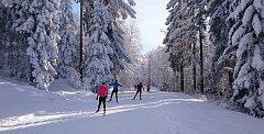 V rakouském Schönebenu u Zadní Zvonkové je upraveno už 56 km běžeckých tras.