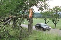 Bouřky si vyžádaly několik ulomených větví.