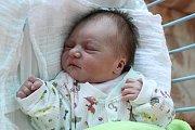 Větřínští partneři Dominika Prüherová a Patrik Kollinger mají od 17. července 2016 dceru. Jmenuje se Patricie Prüherová a po svém narození ve 22 hodin a 11 minut se mohla pyšnit mírami 50 centimetrů a 3000 gramů. Tatínek u porodu asistoval.