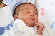 Pětiletý Patrik se 30. května 2016 v18 hodin a 6 minut dočkal malého brášky. Jan Dvořák měřil 51 centimetrů a vážil 3495 gramů. Rodiče obou dětí, kapličtí Petra Volfová a Jan Dvořák, byli u porodu společně.