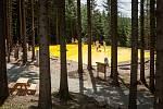 Velká trampolína je jednou z atrakcí lipenského Království lesa.