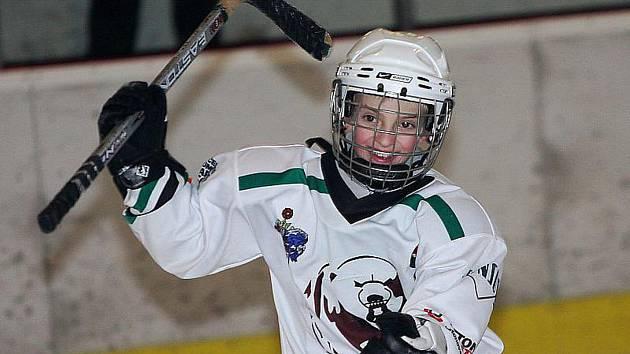 Děti si můžou vyzkoušet, jaké to je být hokejistou.