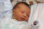 Patnáctiletý Tomáš se v úterý 19. května 2015 pět minut před 10. hodinou dopolední dočkal malého brášky Michaela Madeje. Ten se narodil sváhou 3550 gramů. Rodiči obou dětí jsou Marie a Martin Madejovi zHořic na Šumavě. Tatínek u porodu asistoval.