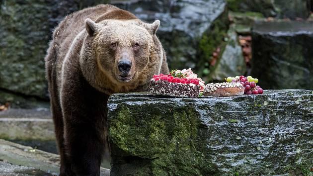 Na obyvatele medvědího příkopu nemohli o Štědrém dni zapomenout obyvatelé Českého Krumlova a okolí.