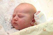 Dvouletá Sandra se 21. října 2016 v5 hodin a 15 minut dočkala malé sestřičky. Linda Vášová se narodila smírami 50 centimetrů a 4140 gramů hornoplánským manželům Leoně a Alešovi Vášovým. Tatínek u porodu nechyběl.