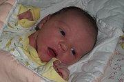 Květoslava Böhmová a Dušan Švarc mají od 8. ledna 2016 dceru Teu Švarcovou. Holčička, která se narodila ten den v7 hodin a 24 minut, bude vyrůstat vKřenově.