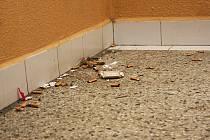 Na chodbách v některých částech domu je mnoho špíny a nečistot.