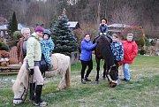 Na Laguně a poníkovi Pepínovi se s nadšením povozily děti na adventním trhu v zahradnictví. Koním zase chutnala zelená tráva, která ještě na trávnících zbyla.