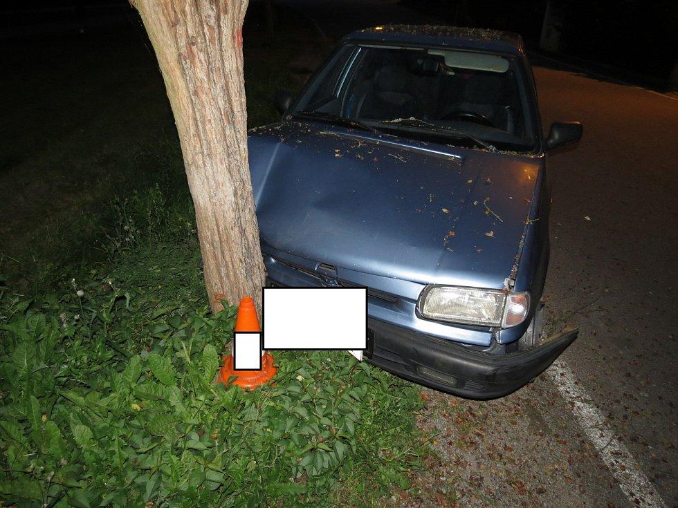 Muž se svojí felicií skončil ve Větřní ve stromě. Foto: Policie ČR