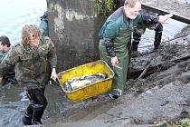 Rybáři byli sehraná parta, všechno šlo ráz na ráz.