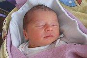 Porodní váhou 3200 gramů se mohla po narození pyšnit holčička jménem Flora Boico. Na svět vykoukla přesně v11 hodin a 52 minut vpondělí 27. dubna 2015. Vyrůstat bude po boku dvouapůlleté sestřičky Ruby, která už se na ni moc těší doma v Novosedlech.