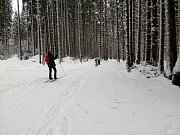 Kolem Hojné Vody a Starých Hutích jsou skútrem projeté stopy na klasiku, sněhu je dost i v lesních úsecích.