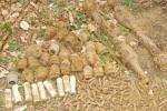Detail pěchotní munice Wermachtu nalezené na Lipensku.