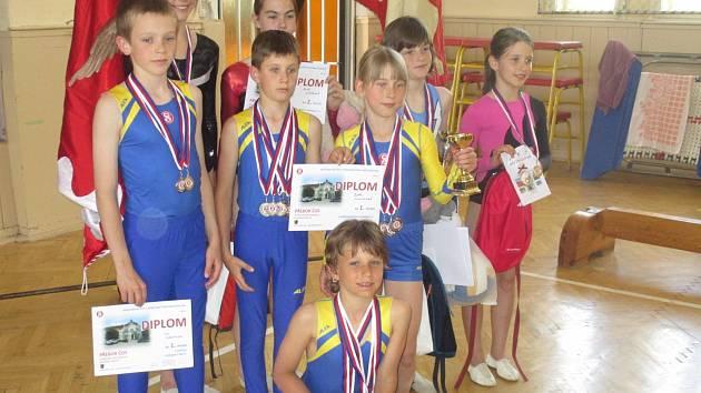 Výběr mladšího žactva Jihočeské župy při finále republikového přeboru České obce sokolské v Prostějově posbíral celkem patnáct medailí.