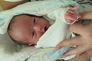 Alexandr Puška z Hořic na Šumavě se narodil 30. dubna v 5.56 hodin o měsíc dřív, a proto vážil 2,20 kg a měřil 30,4 cm. Jeho rodiči jsou Soňa a Vladimír Puškovi. O porod tatínek přišel, protože Alexandr se dostal na svět císařským řezem.
