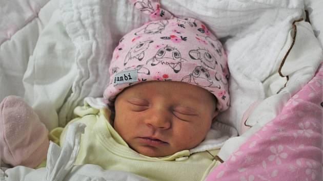 Natálie Konečná je prvním miminkem Lenky Ginzelové a Vojtěcha Konečného z Loučovic. Na svět přišla s mírami 3 085 gramů a 49 centimetrů a v rodném listě bude mít datum narození 21. prosince 2019. Narodila se přesně v 9.56.