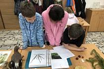 Žáci ze ZŠ Horní Planá se na hornoplánské divizi Vojenských lesů a statků účastnili regionálního kola soutěže YPEF.