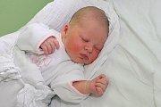 Prvorozená Viktorie Borovková, narozena 26. 10. 2016 v6:21, se pyšnila mírami 52 cm a 3845 g. Novopečená maminka Zuzana Hüttnerová se svěřila, že její partner Zbyněk Borovka jí byl díky své přítomnosti u porodu velkou oporou. Rodina žije vČ. Krumlově.