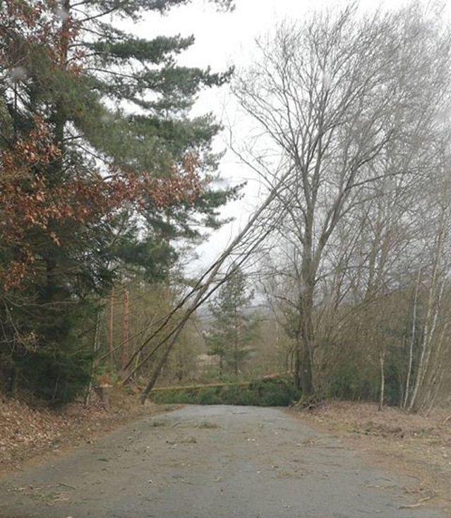 Stromy uzavřely silnici také mezi Větřním a Kájovem.