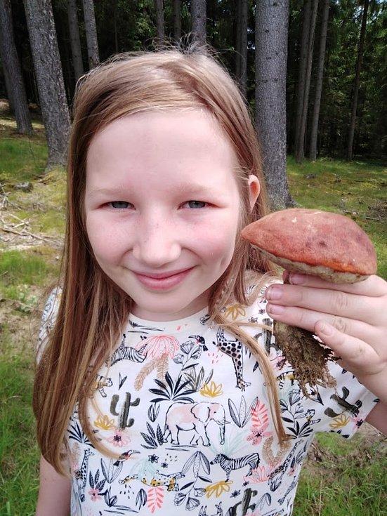 Anička našla křemenáče na Lipensku.