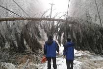 Na lanovku na Kleť spadl na začátku prosince strom.