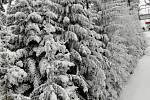 Žádné fronty, pár stupňů pod nulou a skvěle připravené sjezdovky. Lyžařská sezóna 2018/19 na Lipně začala ukázkově.