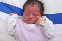 Jana Bártlová a Michal Dibďák ze Světlíku jsou od 15. prosince 2010 pyšnými rodiči jejich čtvrtého společného miminka. Daniela Dibďáková přišla na svět v 8.03 hodin, měřila 48 centimetrů a vážila 3,2 kilogramu.