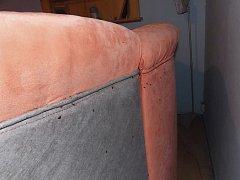 Takto vypadal gauč v jenom bytě ve Větřní, který před několika lety zamořily štěnice. Majitelka dlouho netušila, že tyto nezvané hosty doma má.