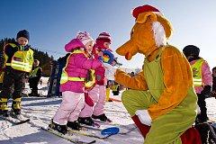 Lišák Fox v lipenském ski areálu. Ilustrační foto.