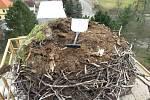 V Kájově mají čápy rádi, vyčistili jim jejich hnízdo.