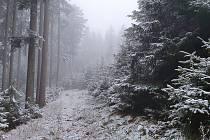 První sníh zimní sezóny 2019/2020 na Lipensku.