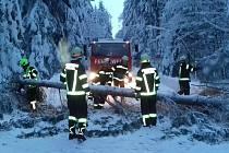 Rakouští hasiči v okolí Hochfichtu odstranili popadané stromy.