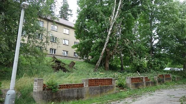Popadané stromy v Loučovicích