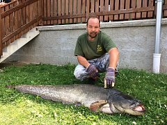 Marek Rozvald chytil v Lipně sumce dlouhého 190 centimetrů.