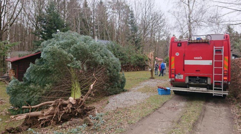 Hasiči odstraňovali strom spadlý na střechu chaty v Dolním Třeboníně.
