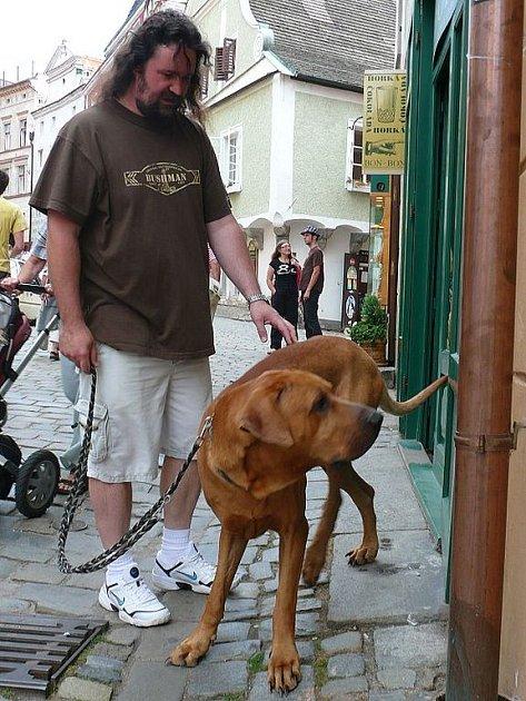 Nová městská vyhláška má za úkol také ochránit před samotnými psy ty z občanů, kteří se zvířat bojí, nebo k nim nemají kladný vztah.