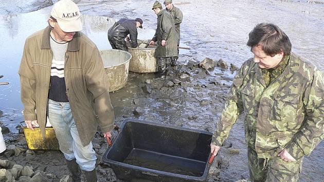 Českokrumlovští sportovní rybáři zahájili jarní výlovy.