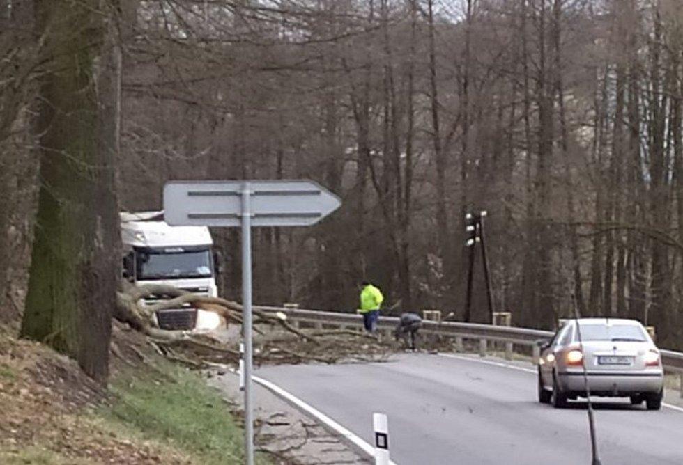 Strom přes cestu spadl i mezi Kájovem a Křenovem na Českokrumlovsku.