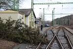 Na nádraží ve Vyšším Brodě spadl na koleje kus borovice.