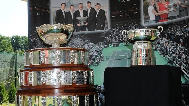 Davis Cup a Fed Cup. Ilustrační foto