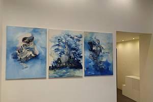 Pracovníci výstavní síně Pasáž v Přerově v těchto dnech instalují velkoformátové malby Jana Pražana. Výstava začne v pondělí 18. května.