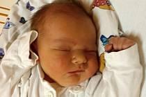 Vojtěch Mrukwia, Hustopeče nad Bečvou, narozen dne 14. listopadu 2014, míra: 54 cm, váha: 4700 g