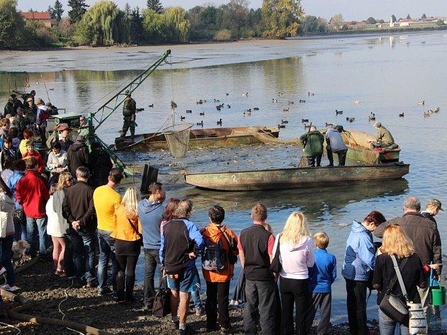 Výlov Hradeckého rybníka v Tovačově