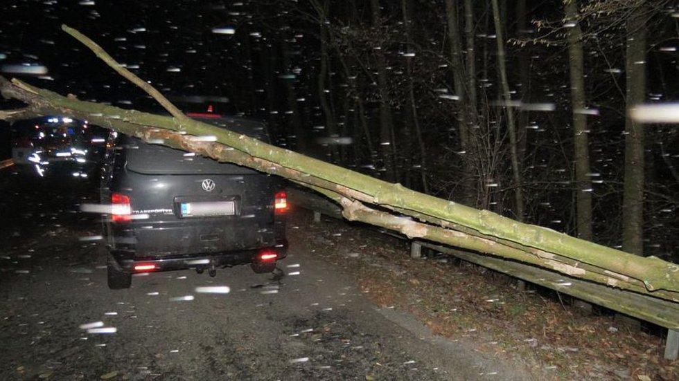 Na auto u Horní Újezdu spadl strom