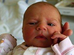 Vanesa Davidová, Tovačov, narozena dne  4. srpna 2014 v Přerově, míra: 49cm, váha: 3066g