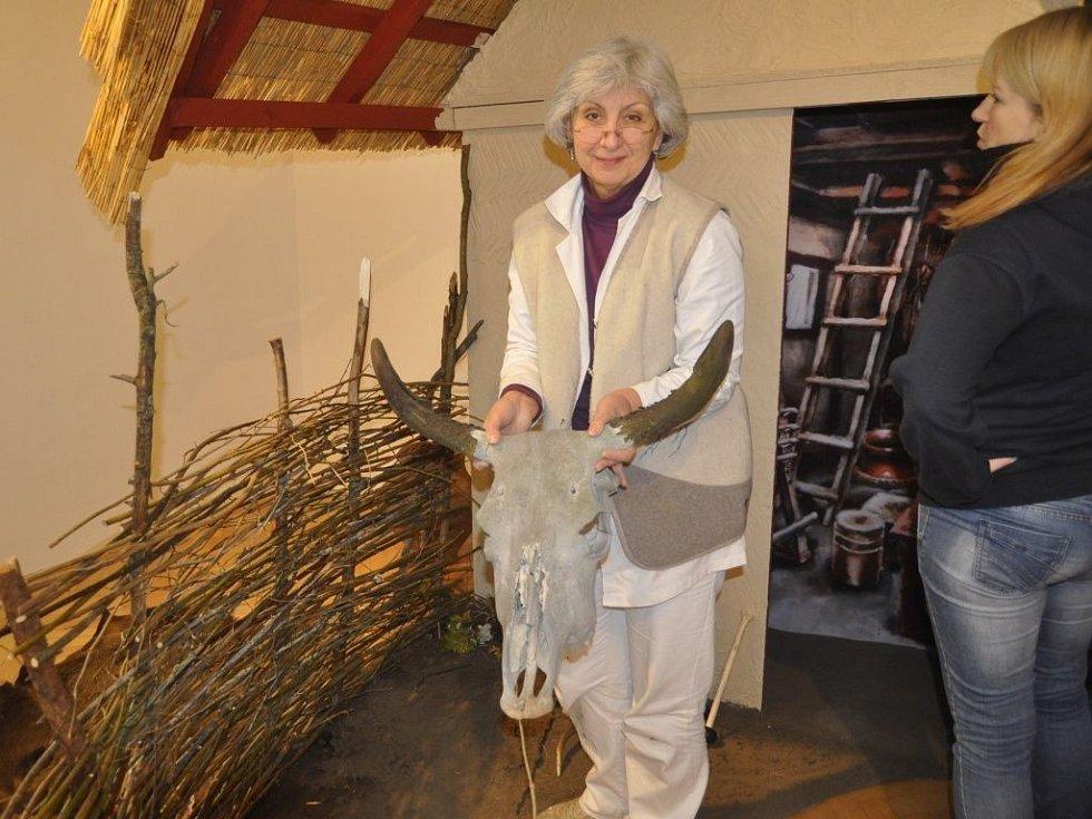 Pravěké osadě Hlinsko na Lipnicku je věnována výstava, kterou instalují v těchto dnech archeologové v prostorách Muzea Komenského v Přerově. Její vernisáž se uskuteční v úterý 15. listopadu v 17 hodin.