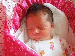 Nikol Navrátilová, Přerov, narozena dnes 31. května 2016, míra: 48 g, cm váha: 3250 g